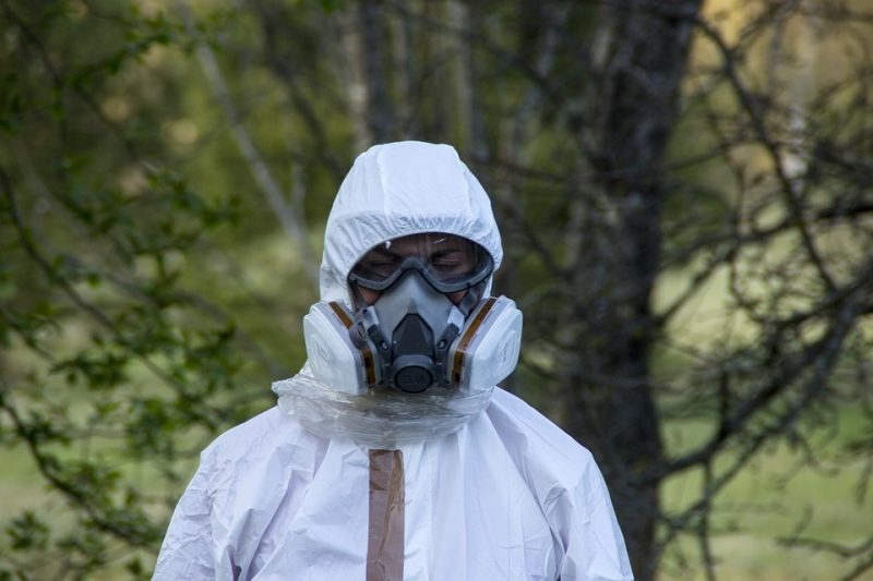 nature 3216890 960 720 - Asbestos Safety And Why Is It Dangerous?
