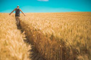 Farming Lone Working Jobs
